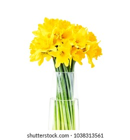 Bouquet of fresh spring narcissus in vase.Isolated over white background.