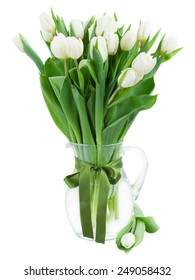 bouquet of fresh  white  tulips in glass vase with green bow   isolated on white background
