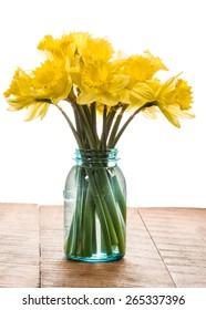 Bouquet of fresh yellow daffodil flowers in a blue mason jar