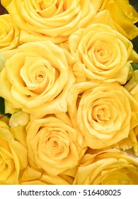 Bouquet of fresh yellow roses, flower bright background.