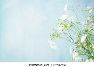 Bouquet of gypsophila on a light blue background. Small white flowers