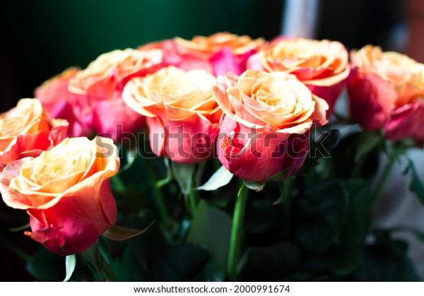 bouquet-hybrid-tea-orange-red-600w-20009