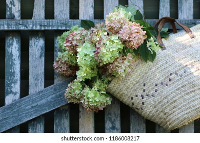 Bouquet of hydrangea, hortensia in old authentic market wicker basket, traditional handwoven shopping bag on old box on aged, weathered wooden fence background, natural light and shadow, vintage style