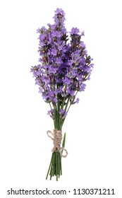 Bouquet of lavender flowers isolated on white background
