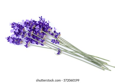 Bouquet of lavender flowers over white background