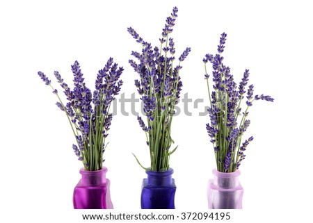Bouquet Lavender Flowers Vases Over White Stock Photo Edit Now