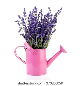 Bouquet of lavender flowers in watering can over white background