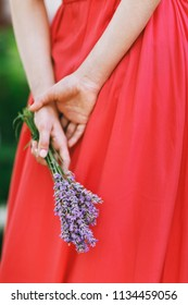 Bouquet of lavender in the hands of a girl, close-up
