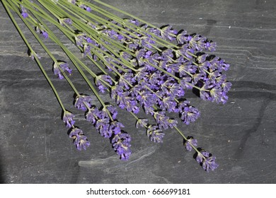 bouquet of lavender on slate background