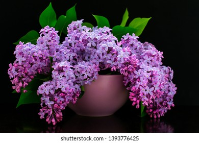 Bouquet of lilac flowers in a lilac vase on a black background
