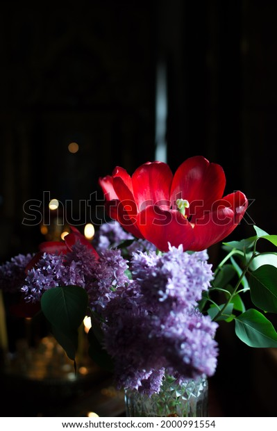 bouquet-lilac-red-tulips-on-600w-2000991