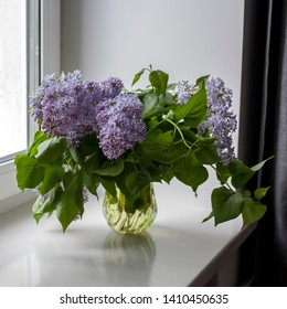 A bouquet of lilac twigs in a transparent green glass vase on the window