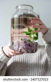 the bouquet of lilac twigs in a transparent jar on the white chair as a decoration of interior. Reflection