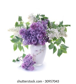 Bouquet of a lilac in a white vase on light tones.