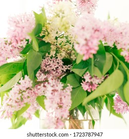 Bouquet of lilacs in the sun