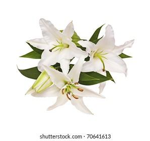 Bouquet from lilies, a flower