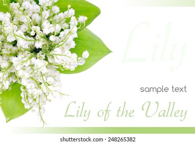 Bouquet of lilies of the valley on a white background.