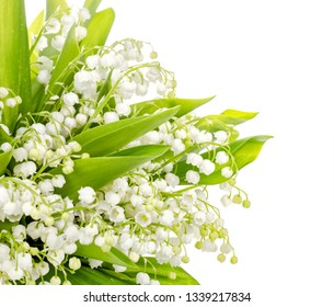 Bouquet of lily of the valley on white background.