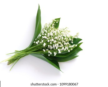 Bouquet of lily of the valleys, isolated on white background, view from above.