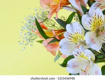 A bouquet of mixed colors of peruvian lillies, Alstroemeria, on a soft pastel yellow background. copy space. Good for any feminine celebration or birthdays