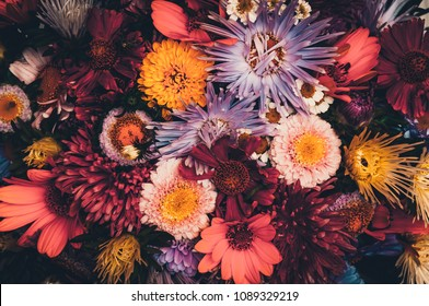 Bouquet of multicolored flowers on a dark background. Colorful bouquet of different fresh flowers. Rustic flower background. Retro style. Vintage photo. close-up