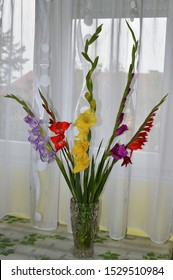 A bouquet of multicolored gladiolus in a vase.