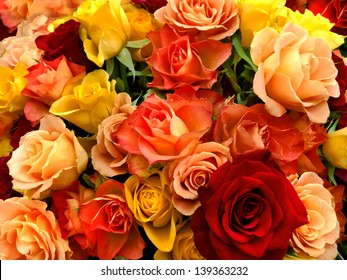 A bouquet of multicolored roses. Floral pattern.