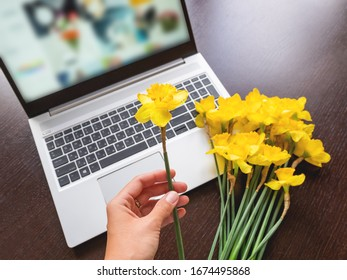 Bouquet of Narcissus or daffodils lying on silver metal laptop. Bright yellow flowers on portable device and in woman's hand. Wooden background.