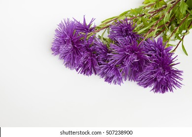 Bouquet needle purple flowers Aster on a white background. Close-up view, space for text. Can be used as invitation or greeting card with birthday, wedding, anniversary, Valentine's day, mother's day.