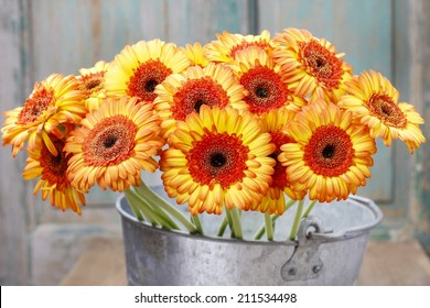 Bouquet of orange gerbera daisies in silver bucket on wooden table