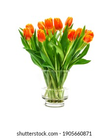 Bouquet of orange tulips on whtie background