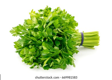 Bouquet of parsley on a white background