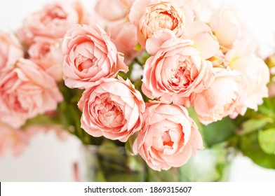 Bouquet of peony pink roses of juliet. Coral flowers, floral background