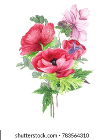 Bouquet with pink anemones,  clematis and branches of eucalyptus, watercolor painting