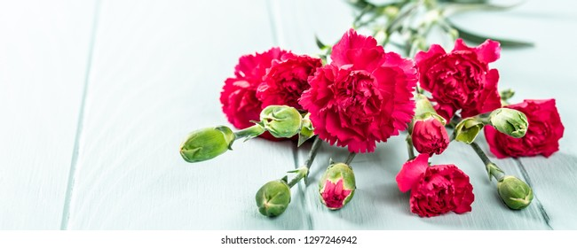 Bouquet of pink carnation on light turquoise wooden background. Banner with copy space.
