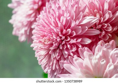 Bouquet of pink flowers on green background