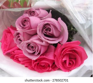 Bouquet of pink and mauve roses lying on their side