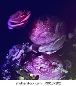 bouquet of pink peonies, dark background.