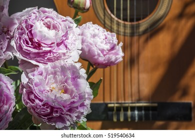 Bouquet of pink peonies is near brown guitar in the sunlight