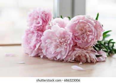 Bouquet pink peonies on the window