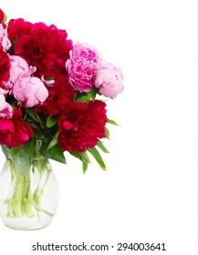 bouquet  of  pink and red   peonies close up  isolated on white background