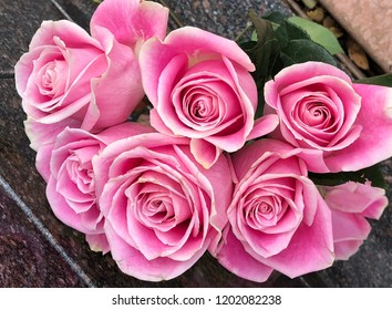 Bouquet of pink rose blossoms