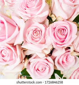 Bouquet of pink roses. Close-up, top view