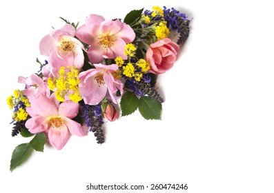 A bouquet of pink roses isolated on a white background perfect for Mothers Day