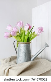 Bouquet of pink tulips in silver watering can.