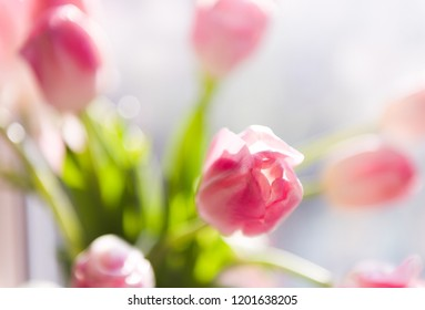 A bouquet of pink tulips in a vase. Soft selective focus