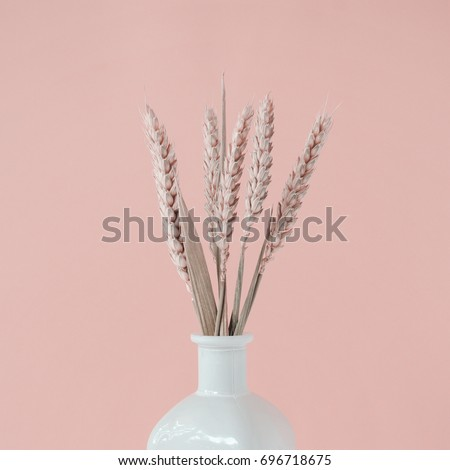 Bouquet Pink Wheat Spikelets White Vase Stock Photo Edit Now