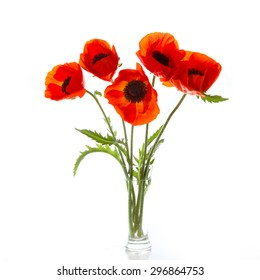 Bouquet of poppies on a white background transparent vase. Space for text.