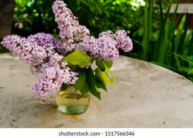 a bouquet of purple lilacs, a transparent vase with branches of a bush