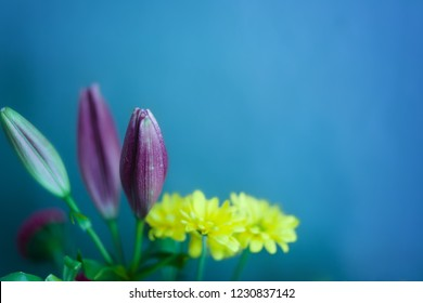 Bouquet of Purple Lilies and Yellow Mums in Front of a Blue Wall Background